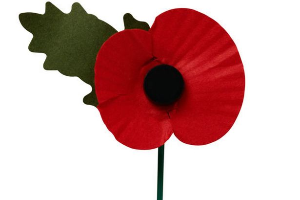 Do you know how to wear your poppy and what it means dorinda the symbolism of the poppy i hope that this year you will take a few moments at 11am on 11th november to think of the poppy and what it represents mightylinksfo