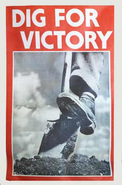 poster-dig-victory
